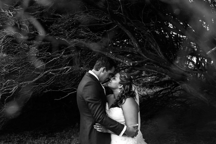 wedding photography perth wedding photographer perth image of bride and groom under tree
