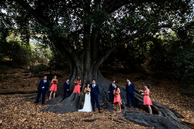 wedding photographer perth matilda bay wedding image of bridal party under tree