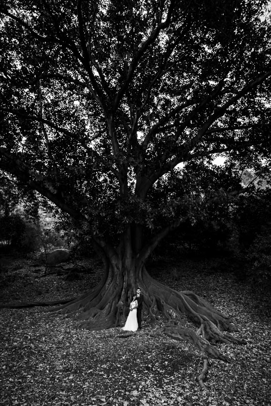 wedding photographer perth matilda bay wedding image of bride and groom hugging under tree