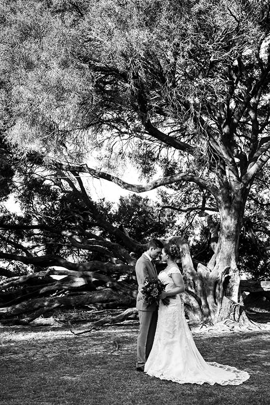 perth wedding planning wedding photo locations perth image of bride and groom