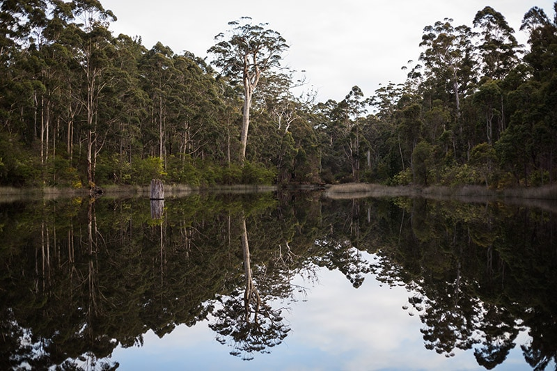 donnelly river village best forest wedding venues perth south west western australia image of donnelly river village