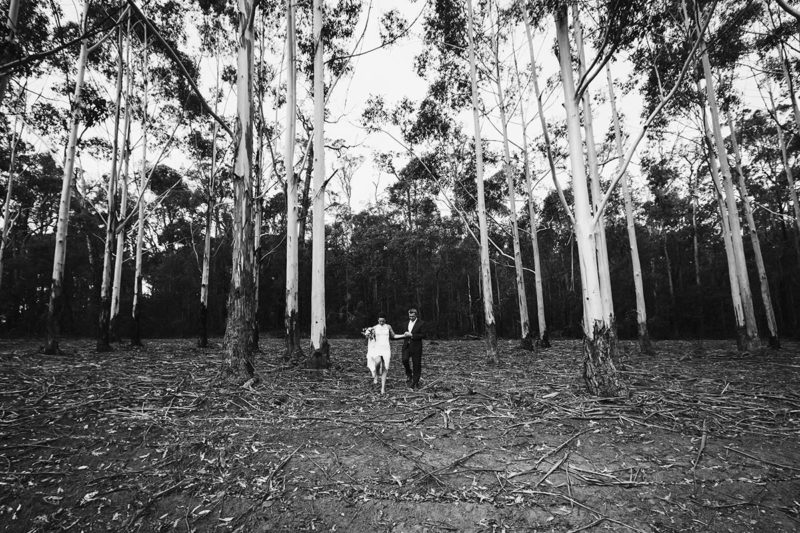 perth wedding photography packages pricing wedding photographers perth image of stonebarn wedding in pemberton