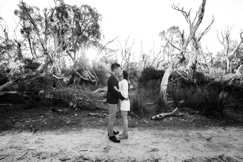 pre wedding photos perth yanchep national park engagement shoot perth wedding photographer image of perth engagement shoot at yanchep national park